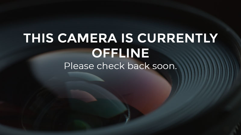 this camera is currently offline